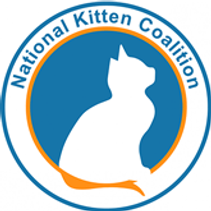 national-kitten-coalition.png