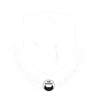 Copy of 20.png