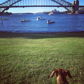 This is me checking out the harbour with Aunty Sophia _sophia.jpg