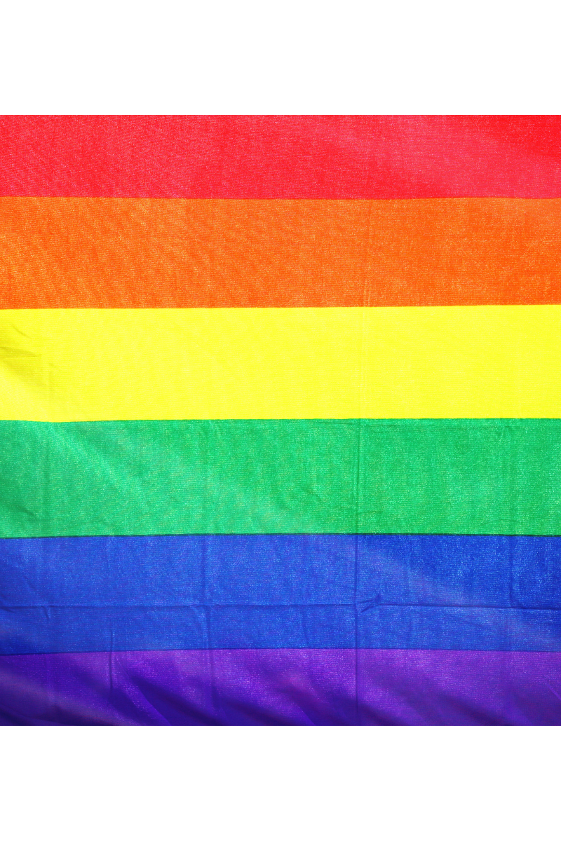 The pride flag