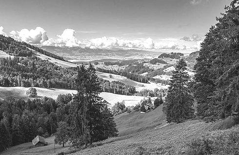 urlaub-in-der-schweiz-hund_edited_edited