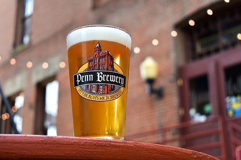Beer in a Penn Brewery Cup in front of brick wall