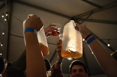 jugs and glasses of beer