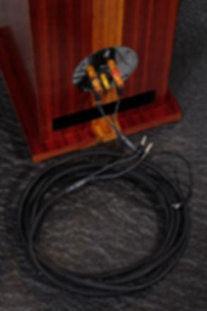 2019-11-27-Cables HPS sur enceinte.jpg