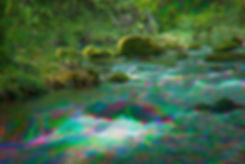 Enchanted stream.jpg