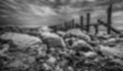 DSC_2151-Edit-Edit-Edit.jpg