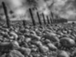 Pebble beach-Edit.jpg
