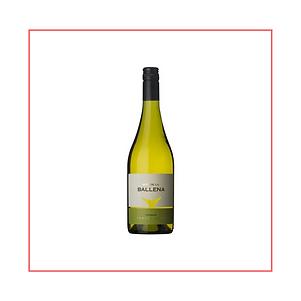 michef.uy | Vinos del Uruguay | Bodega Alto de la Ballena