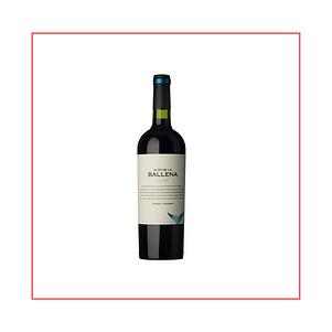 michef.uy   Vinos del Uruguay   Bodega Alto de la Ballena