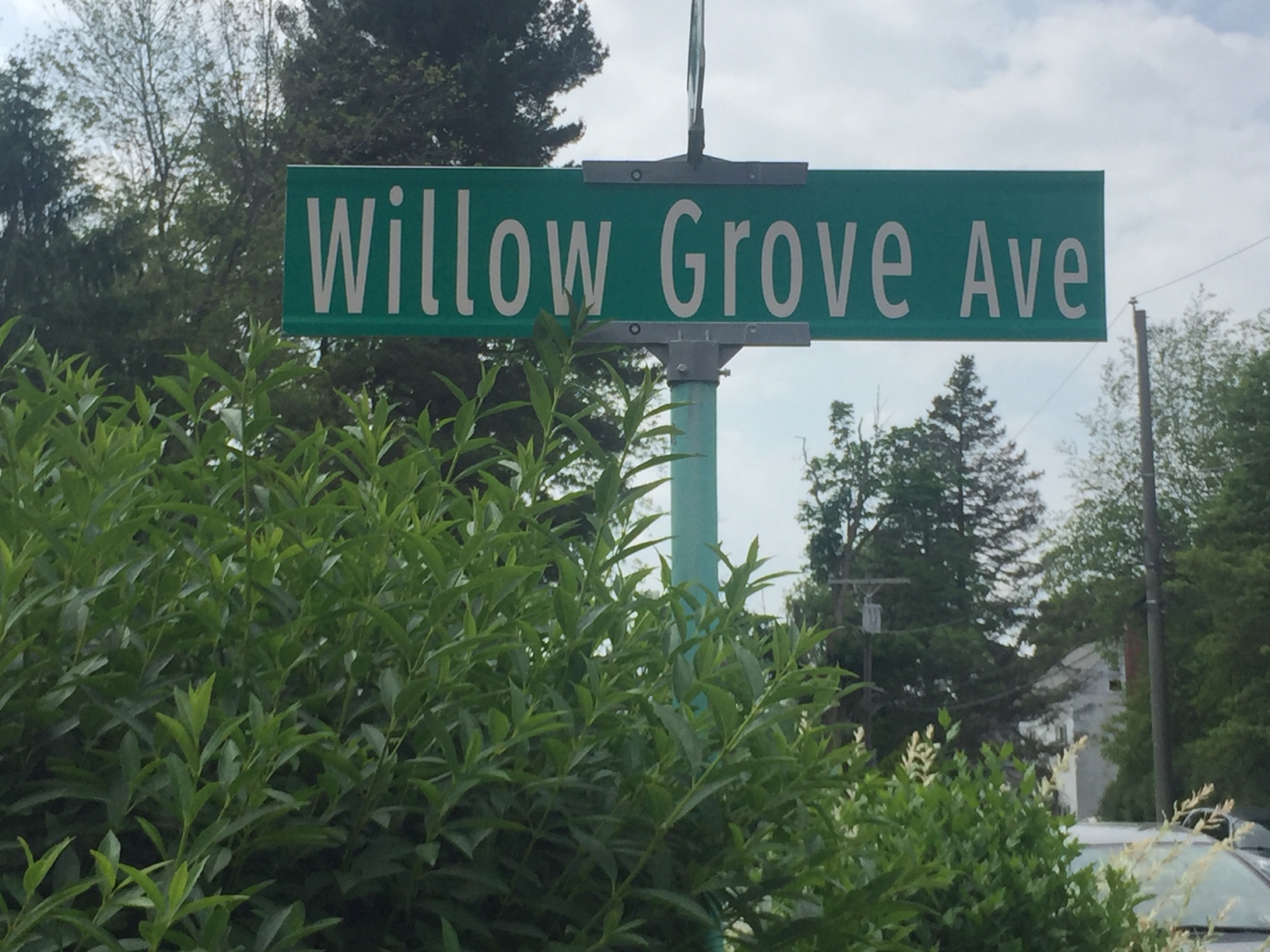 Willow Grove Avenue