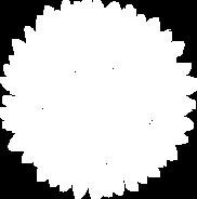 East-Logo-Mark-Reversed.png