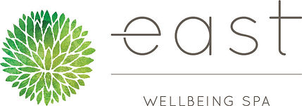 East-Logo-Horizontal-Color SPA.jpg