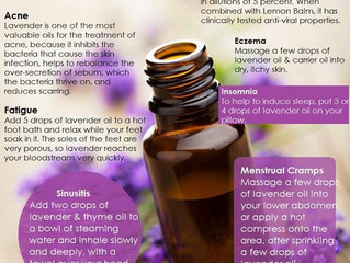 The Virtues of Lavender