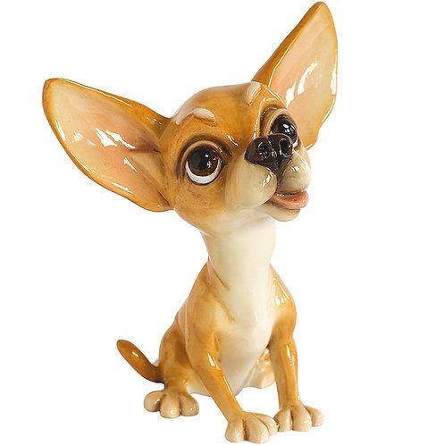 Pixie - Chihuahua