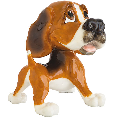 Baxter - Beagle