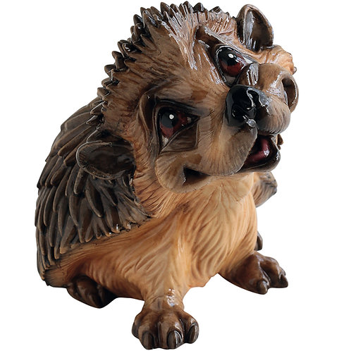 Henry - Hedgehog
