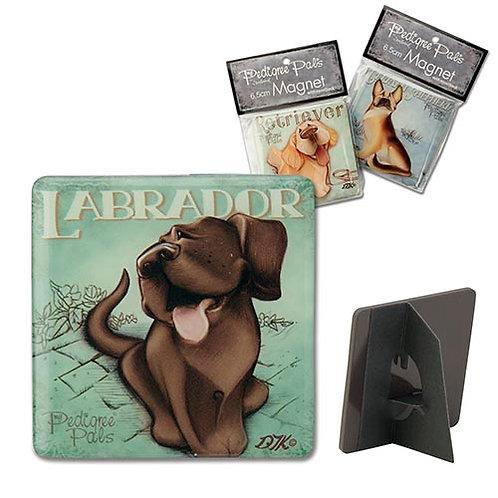 Labrador - Chocolate