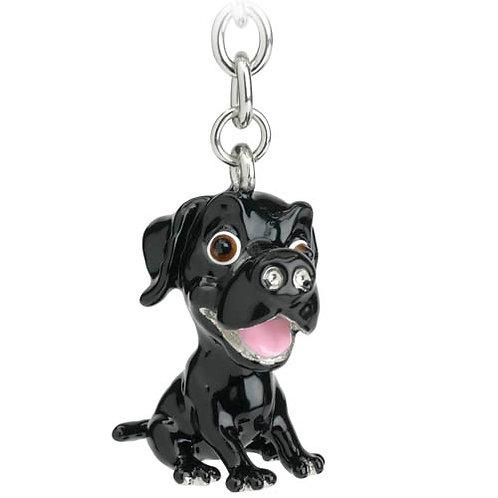 Labrador - Black