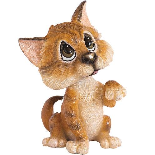 Amber - Tabby Cat