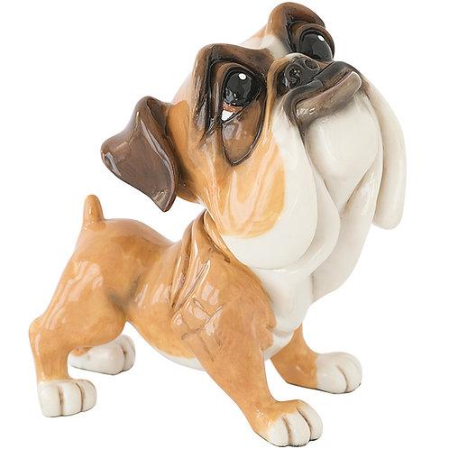 Mick - Bulldog