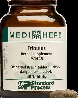 M1445-Tribulus-Bottle-Tablet.png
