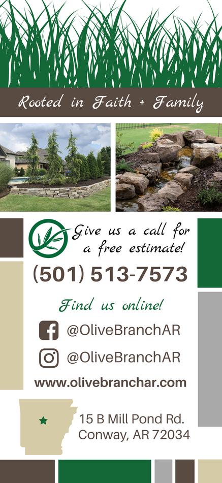 Olive Branch Brochure | Back