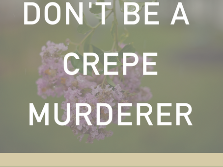 Don't be a Crepe Murderer!