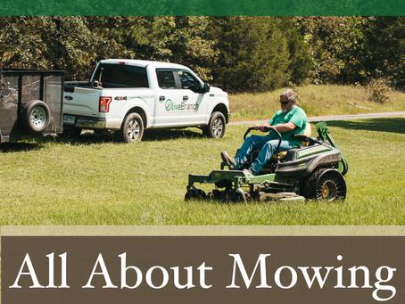 Mowing, Mowing, Mowing.