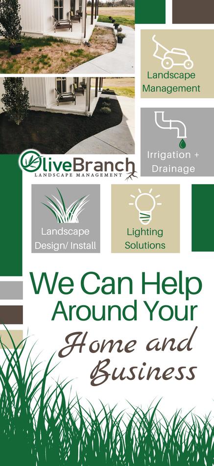 Olive Branch Brochure | Front