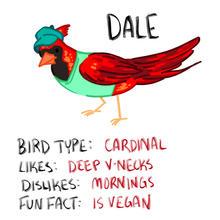 birdprofile1.jpg