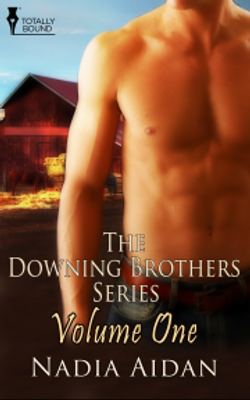 The Downing Brothers Series, Volume One