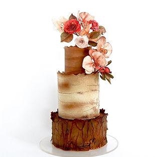 Rustic cake adorned with sugar  Moth orc