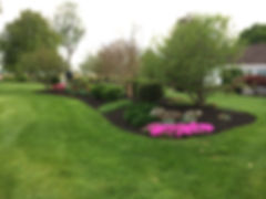 Beautiful landscaped shrubbery from a landscaped design service in Bloomsburg, PA.