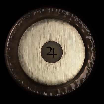 """28"""" Planet Gongs"""