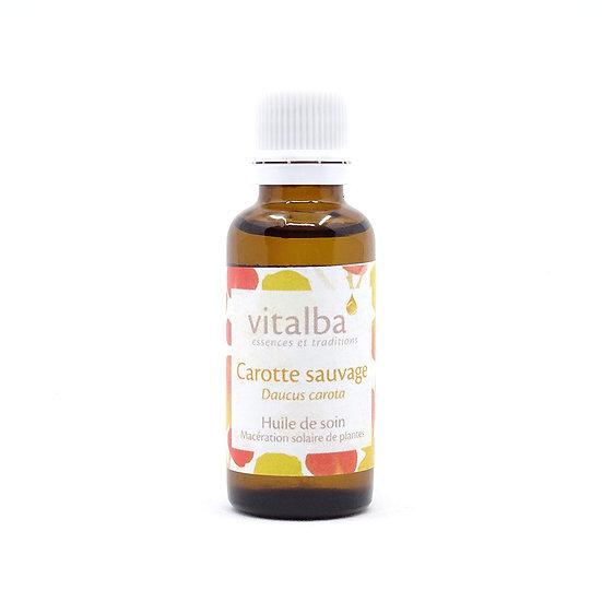 Carotte (Macérât huileux)