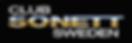 Ny-CSS-logo-6_edited.png