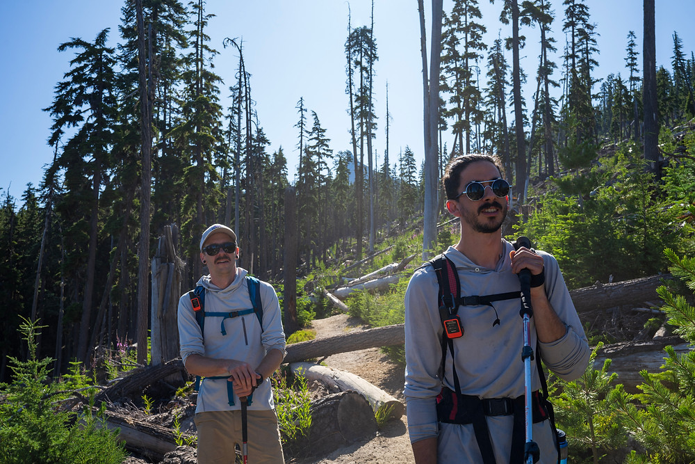 Heading our way through the treeline with Mount Thielsen in the background