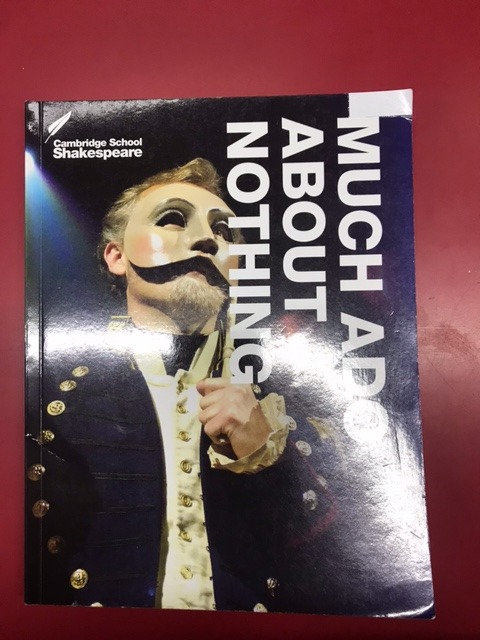 Cambridge School Shakespeare Much Ado about Nothing 3E (SECOND HAND)