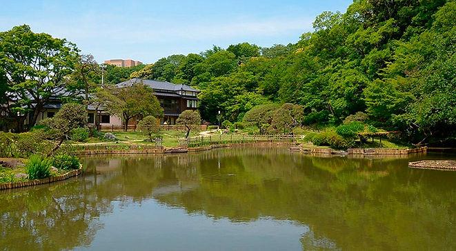 肥後細川庭園2.jpg