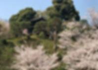 椿山荘.jpeg
