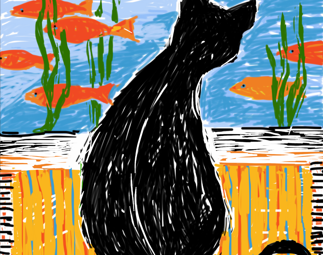 Black cat sees gold fish