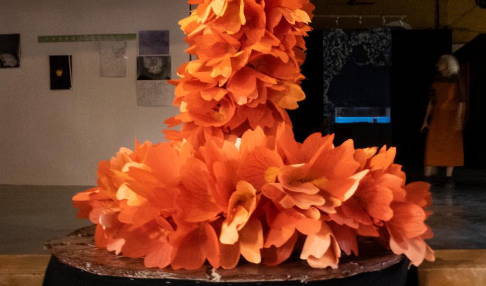 Bianca Ballantyne's paper sculpture