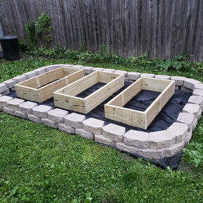 How to Build and Start a Garden