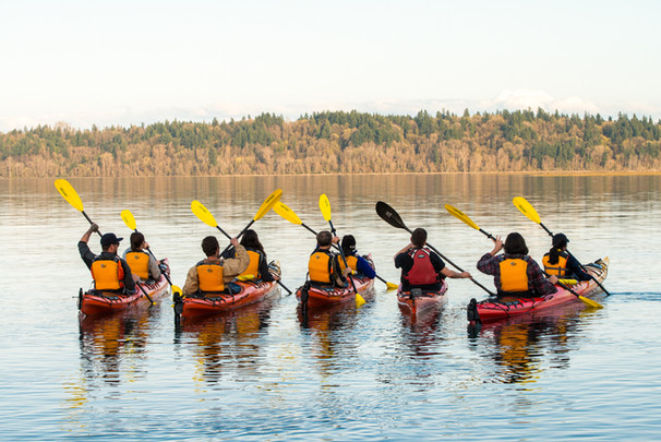 kayakers paddling away in the fall