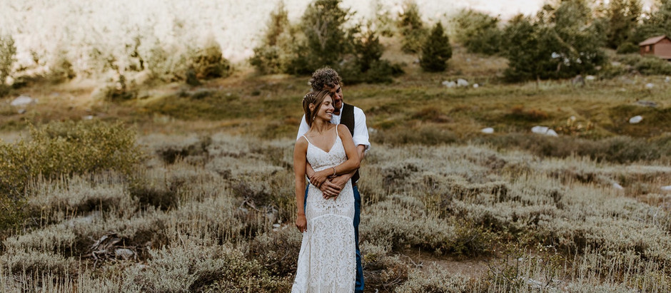 Sequoia Wedding| Addison & Dana