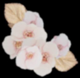 mr-hp-floral-frame-2.png