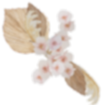 bouquet-14.png