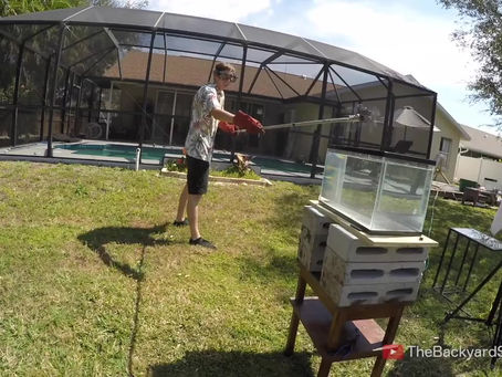 The Backyard Scientist