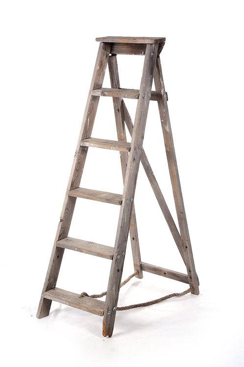 Timber ladder - Medium