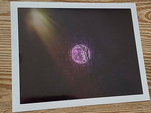 Pink Haze Moon 8x10 Metallic Paper
